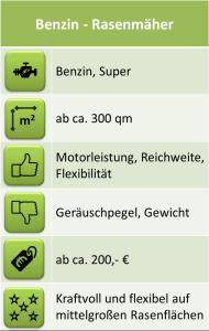 Benzin-Rasenmäher-Vergleich